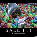 179 - animals ball-pit kid shark