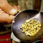 The New California Gold Rush.