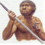 neander