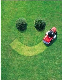 Lawn Smiley Face