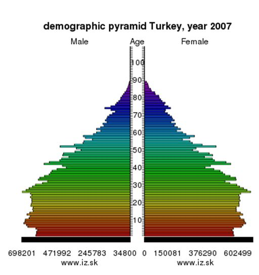 Turkey Demographic 2007