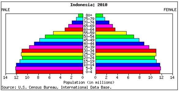 Indonesia 2010 Population