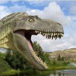 Musings of a Dinosaur