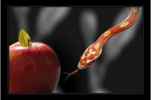 Apple-Snake