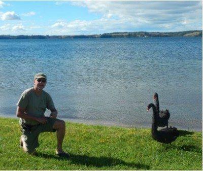 John Thoms - Black Swans