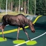 The Solar Road Revisited
