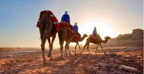 Morroco - Camel Ride
